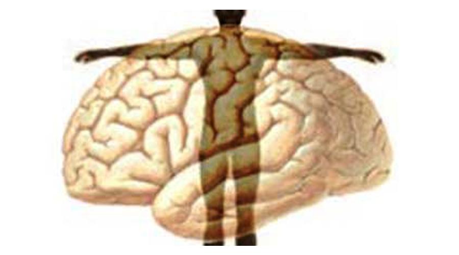 A Mente Sobre O Corpo: A Mente, A Ferramenta Mais Poderosa