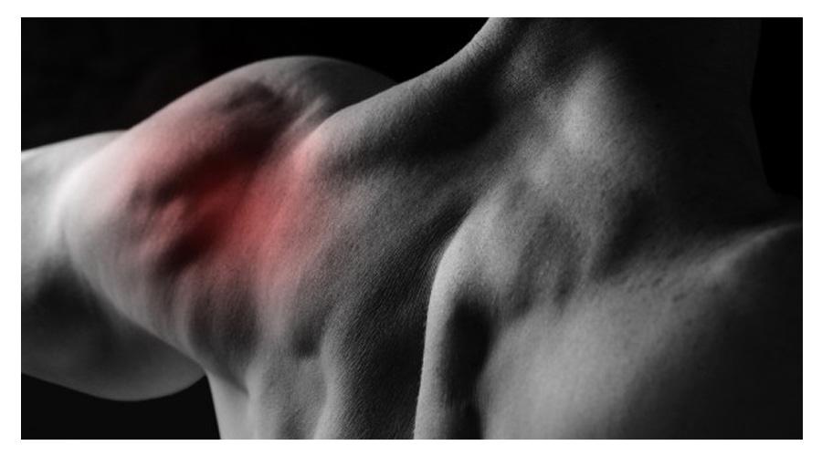 Dor versus Sensibilidade Muscular