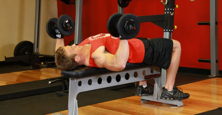 Quantas vezes devemos treinar o mesmo músculo na semana?